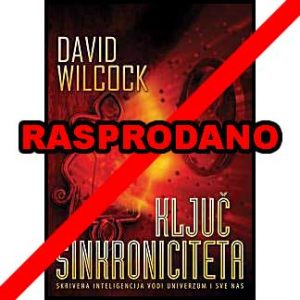 "David Wilcock ""Ključ sinkroniciteta"""